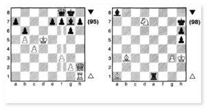 Занятия шахматами летом