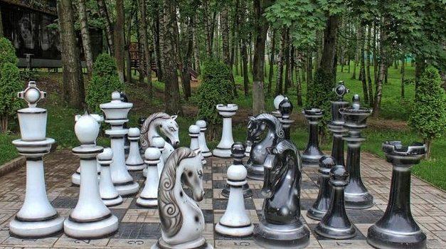 Лето. Шахматы. Можно ли тренироваться, играя…