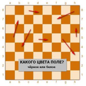 Какого цвета клеточки на шахматной доске