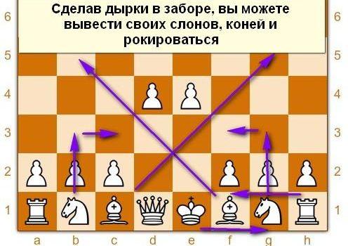 Дебют- начало шахматной партии