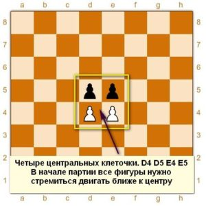 Центральные поля на шахматной доске